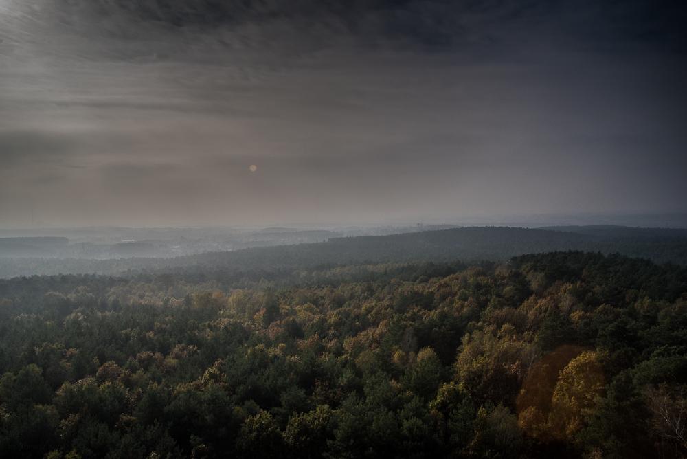 Panorama okolic Poznania - Park krajobrazowy Puszcza Zielonka - Dziewicza Góra