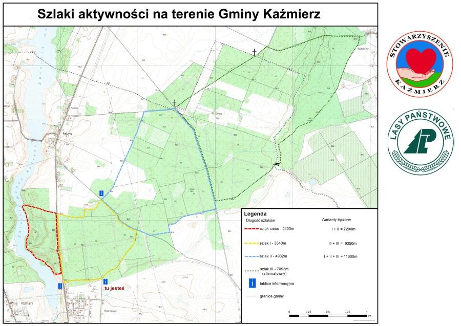 Szlaki aktywności Kaźmierz